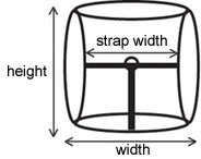 Prong buckle measurements